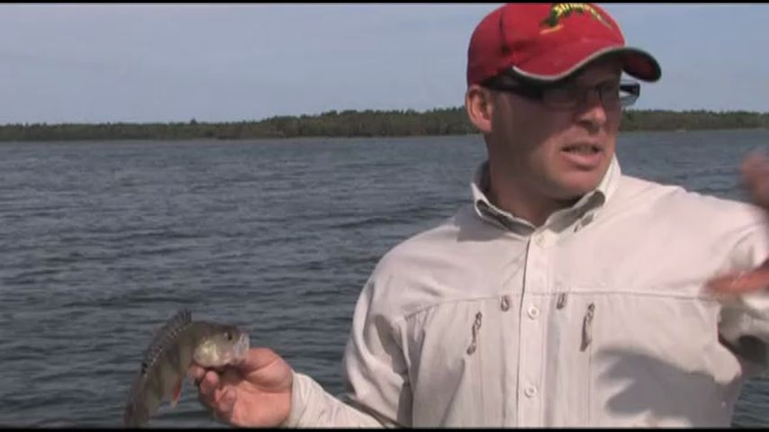 все телевизионные каналы о рыбалке